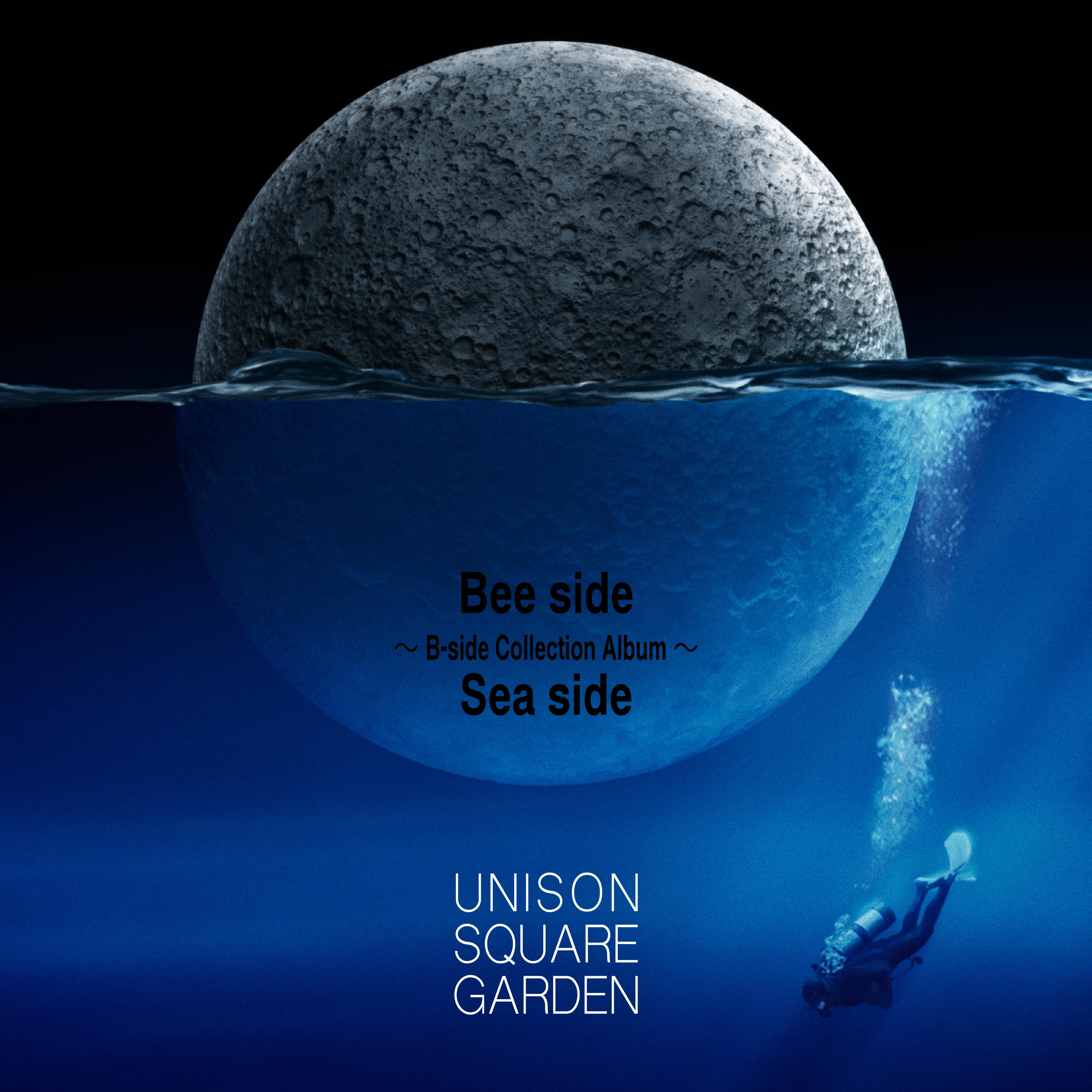 15th Anniversary Unison Square Garden